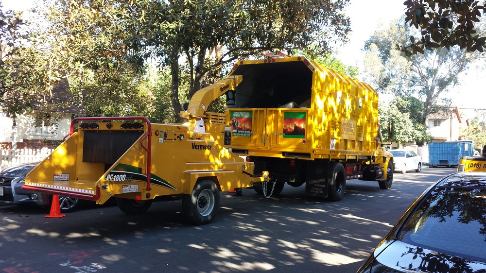 Tree Service Contractor in the San Gabriel Valley